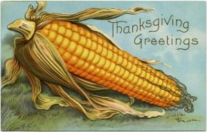 vintage corn clipart, old thanksgiving postcard, corn cob image, free fall graphics, antique corn thanksgiving postcard
