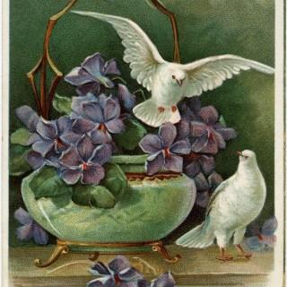 Purple Flowers and Doves ~ Free Vintage Postcard Image