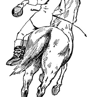 Trick Rider on Horse ~ Free Vintage Circus Clip Art