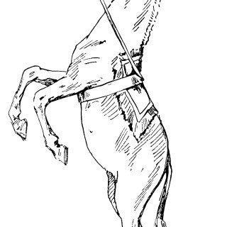 Vintage Circus Horse Standing Trick ~ Free Clip Art