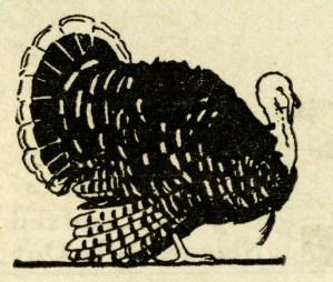 Thanksgiving clip art, vintage turkey illustration, black and white graphics, free turkey printable