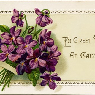 Violets to Greet You at Easter ~ Free Vintage Image