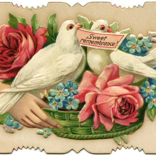 Victorian Calling Cards ~ Free Vintage Images