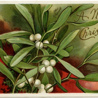 Ellen Clapsaddle Mistletoe and Berries