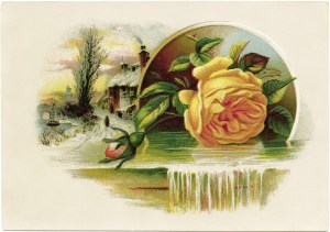 Lion Coffee trade card, Victorian card, yellow rose clip art, vintage advertising card, vintage ephemera graphics