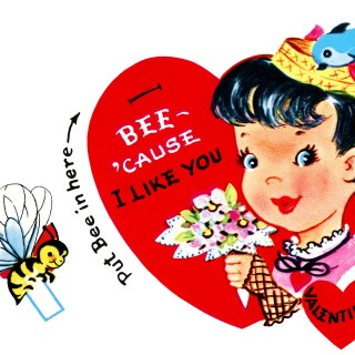 Valentine Girl Flowers and Bee