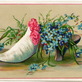 Shoe Filled with Forget Me Nots