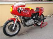 DSC00099 (Large)