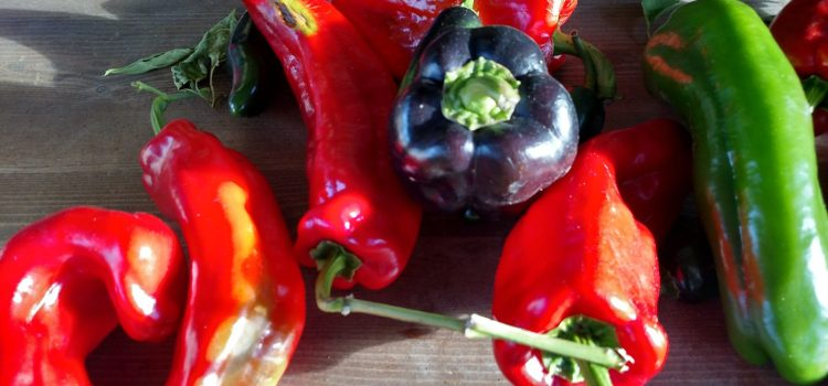 How To Preserve Peppers For The Winter