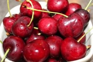 Nothing beats the taste of fresh picked cherries!