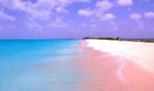 Ποιες είναι οι ομορφότερες ροζ παραλίες του κόσμου;