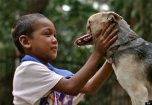 Dog Missing Snout