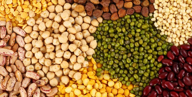 International year of pulses 2016
