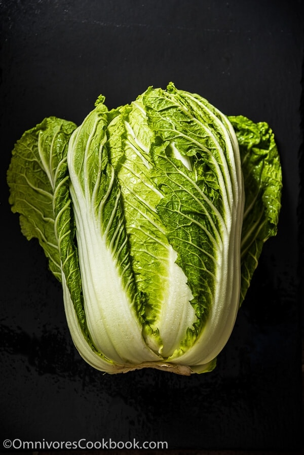 1601_Napa-Cabbage