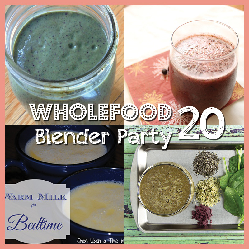 Wholefood Blender Party (20) - Om Nom Ally