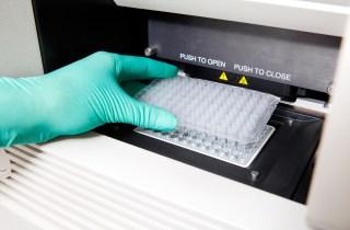 Omunis PCR plate machine