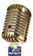 microfone profissional 4 (1)