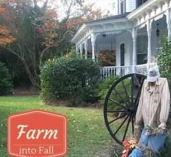 farm into fall feature