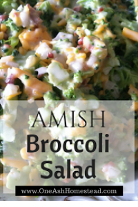 amish broccoli b