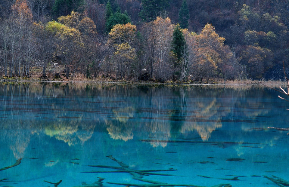 five flower lake, china