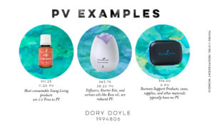 pv-examples