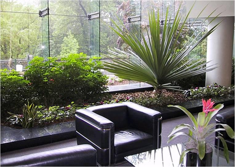 Los espacios laborales decorados con plantas ayudan a la for Plantas para oficina