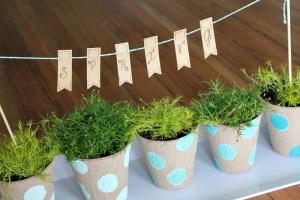 Indoor Garden with ombre polka dot pots