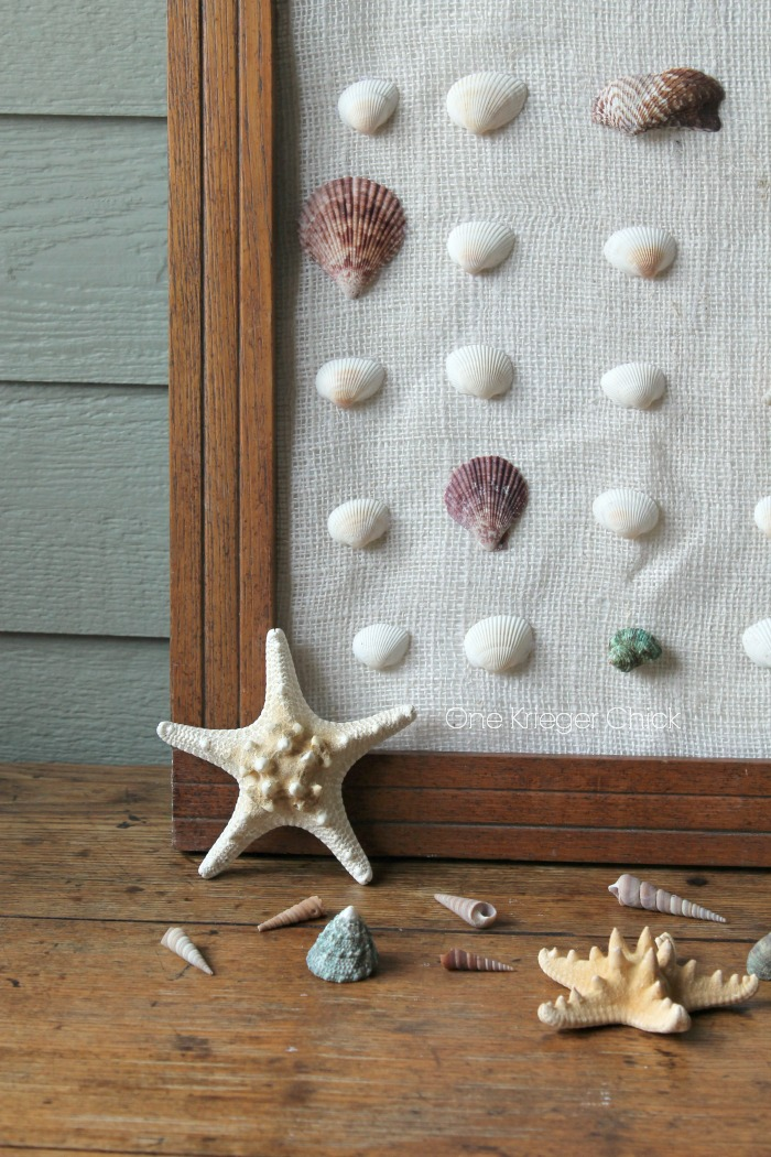 Add instant Beach with a simple shell specimen art!