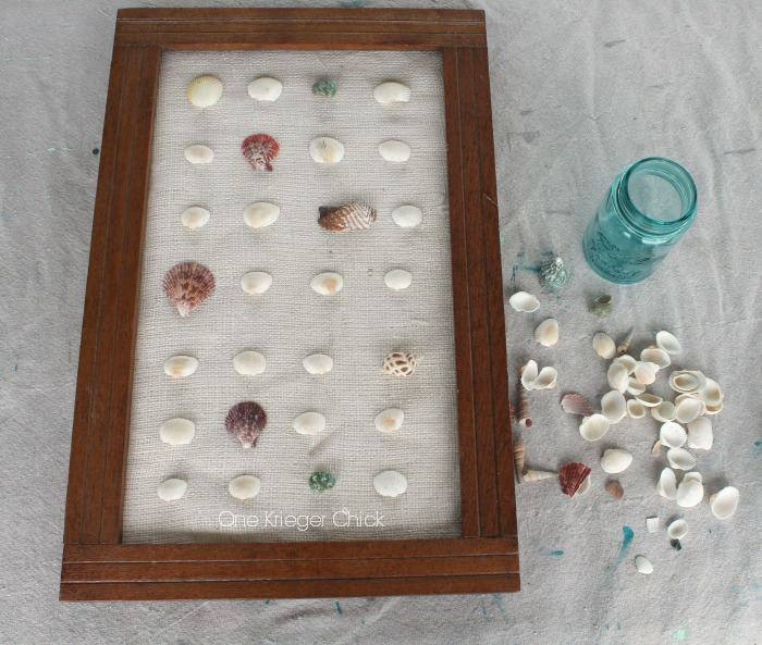 Love-this-Shell-Specimen-Art-perfect-Beachy-decor!