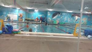 swim safe goldfish canton