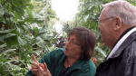 Nature Center Manager Linda Paull shows Neil Zurcher a banana tree