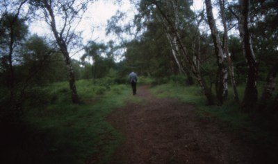 Papa in Sherwood Forest