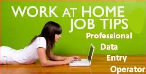 Data Entry Jobs-How to Become a Professional Data Entry Operator