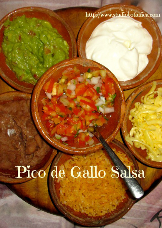 Building a Paleo Pantry: 10 Dips & Salsas | Only Taste Matters