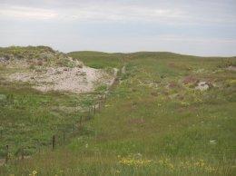gerrish-mcginn-ranch-2016
