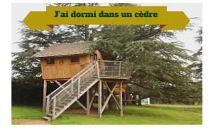 cabane arbre loire