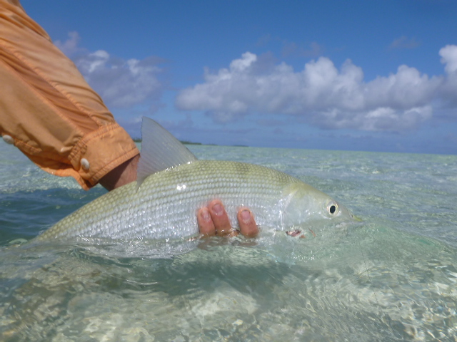 saltwater fly fishing polynesia travel blog rob roberts and brianna randall