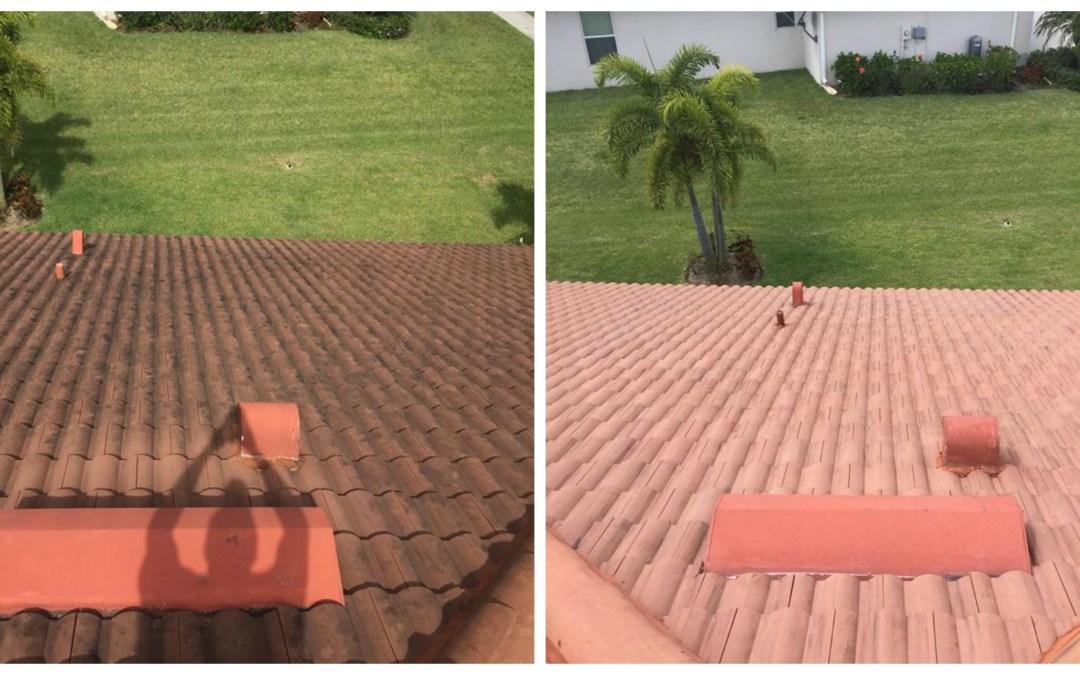 Roof Softwash A