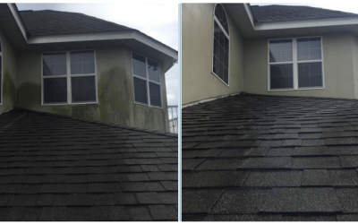Softwash exterior cleaning in Ruskin,FL