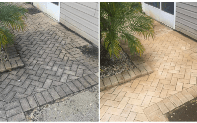 Pool pavers deep cleaning in Tampa, FL
