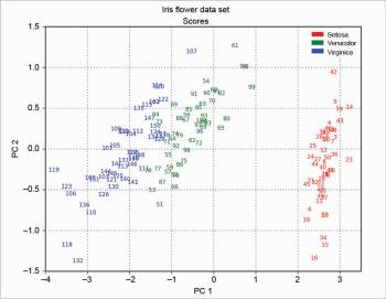 Figure 12 Scores SVD