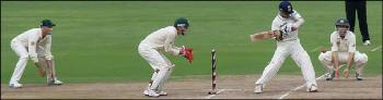 figure-4-cricket-image