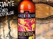 kaltenecker-autumn-nove-logo
