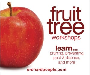 Fruit Tree Care Training Workshops Online