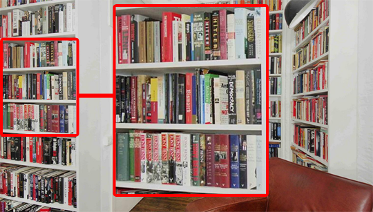 lansman bookshelves zoomed 2