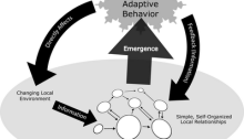 Complex_Adaptive_Systems_(shaded)