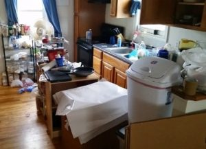 Our kitchen after the movers left...