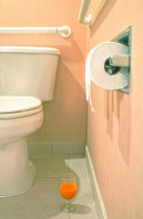 toilet plumber photo