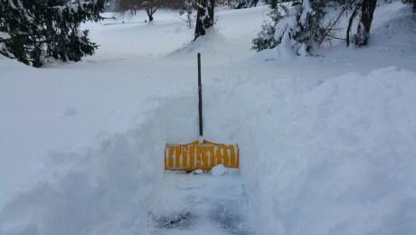 Day-shovel