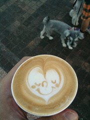 dog coffee photo